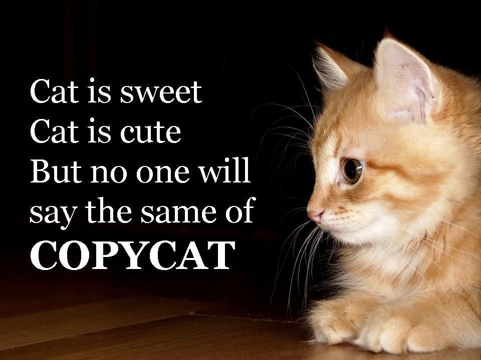 Copycat is not sweet nor cute
